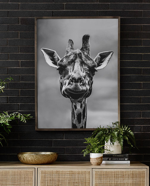 Giraffe photo hanging on wall to show that Obelisk Home carries all types of wall art