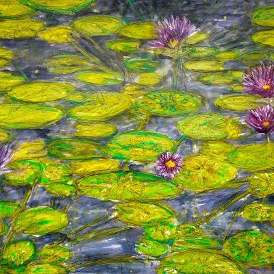 Atlantis Waterlillies