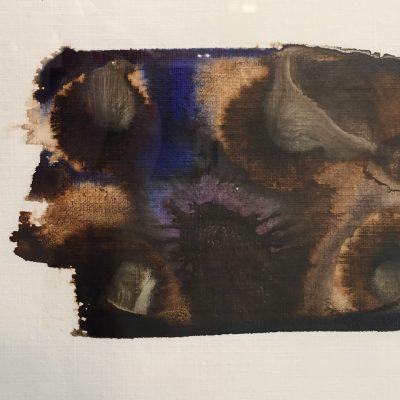 Nimbus by Meganne Rosen